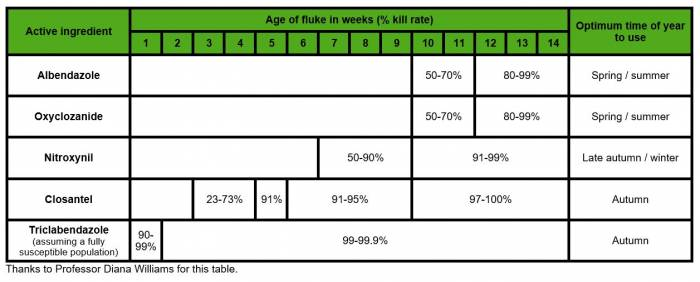 Different flukicides kill different ages of fluke. Click to view larger.