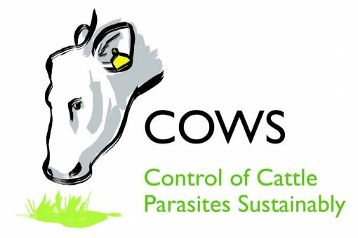 External parasite advice for cattle keepers